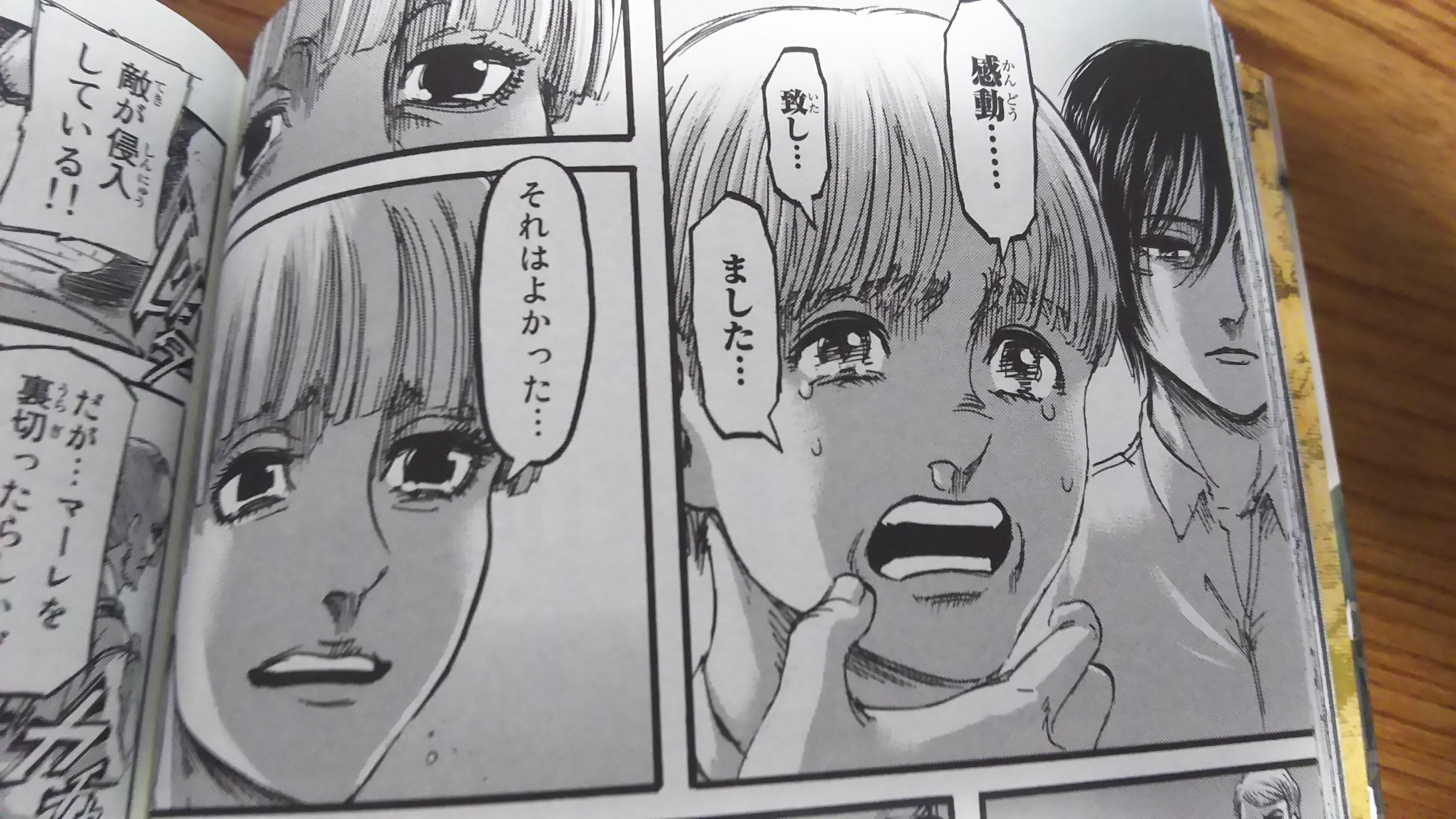 """マンガ読了あれこれ 進撃の巨人29 / About reading manga """"attack on titan"""" Vol. 29"""